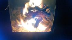 Mesquite Fire