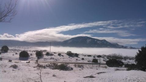 Nogal Fog